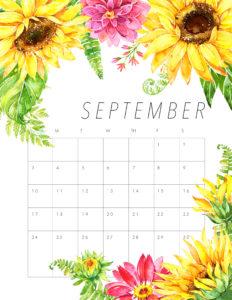 яркий планер на сентябрь