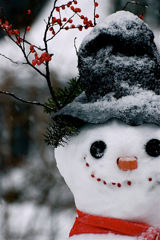 Слепить снеговика - список дел на зиму